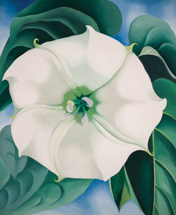 Georgia O'Keeffe Jimson Weed/White Flower No. 1 1932